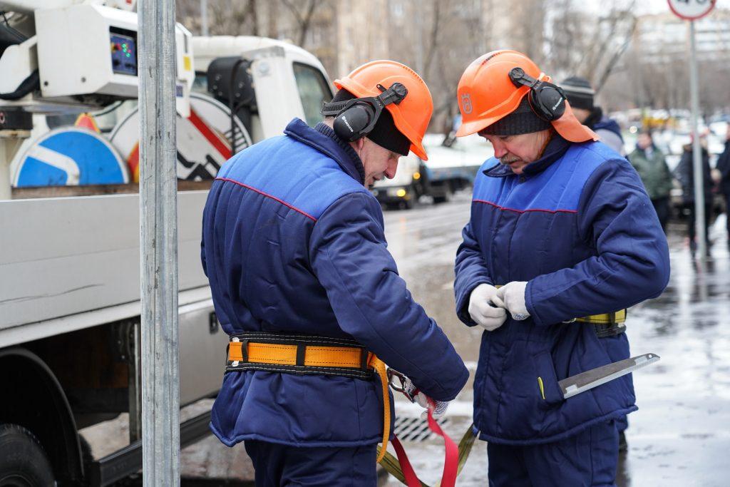 Омолаживающую обрезку деревьев провели на одной из улиц в Замоскворечье