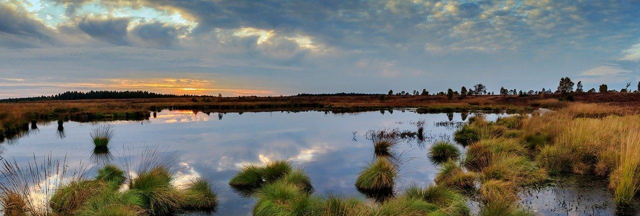 Заповедные территории России покажут на выставке в Таганском парке. Фото: pixabay.com