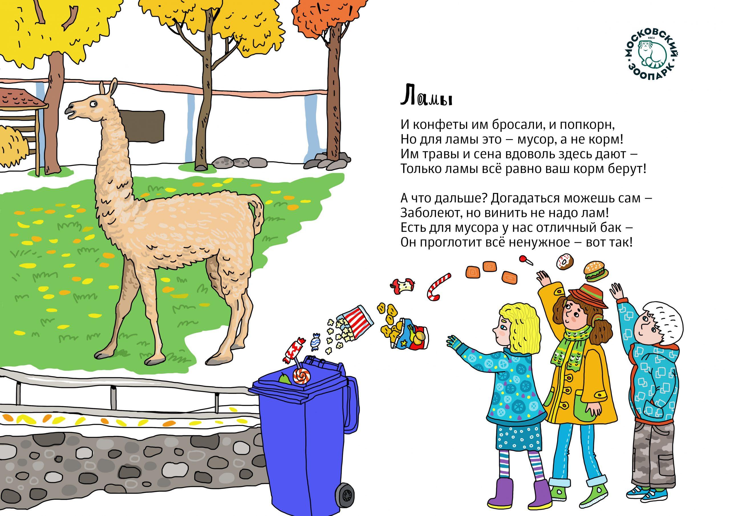 Проект «Любить – не значит кормить» стартовал в Московском зоопарке. Фото предоставили в пресс-службе Московского зоопарка