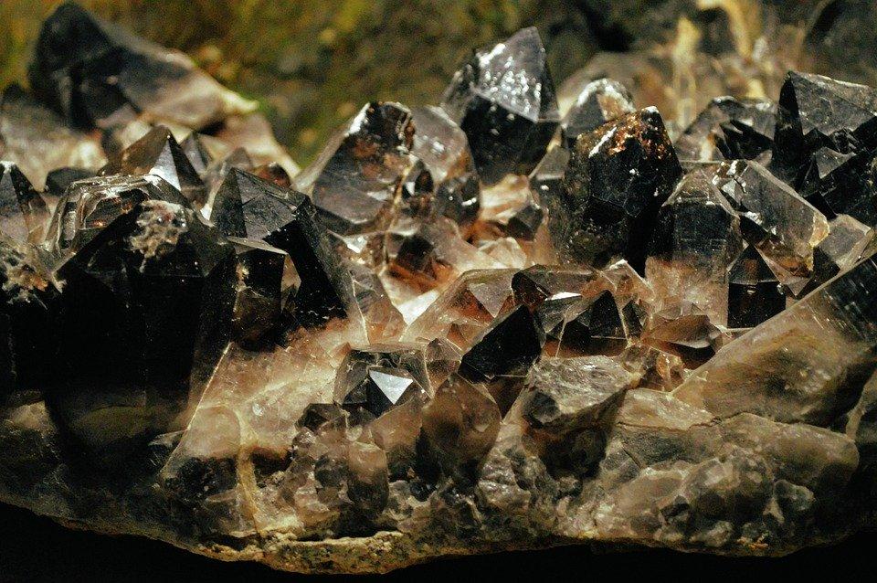 Кости динозавров и раскопки: в Биомузее организуют День геологии. Фото: pixabay.com