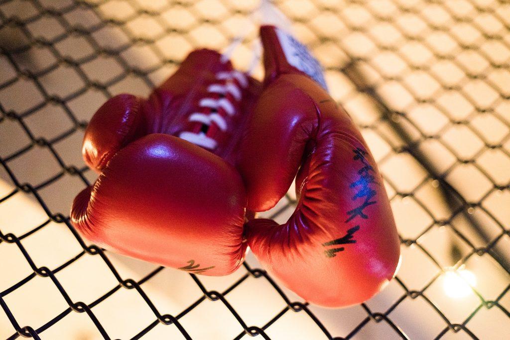 Онлайн-урок бокса проведут сотрудники филиала «Красносельский»
