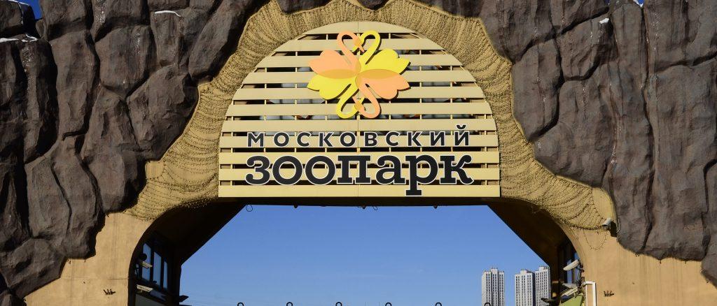 Декоративное ограждение установили над пролетным строением моста в Московском зоопарке