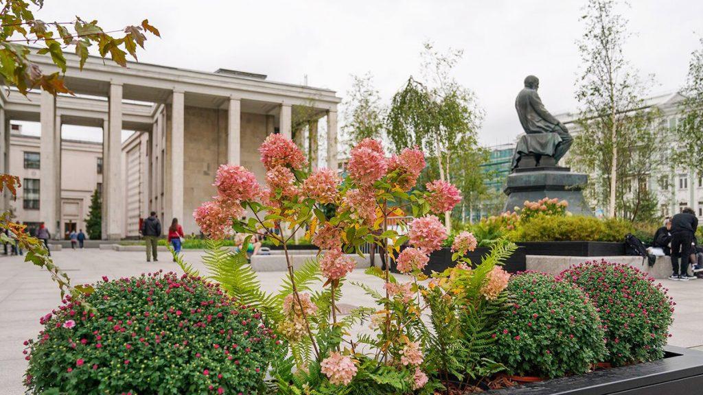 Некоторые районы столицы озеленят благодаря растениям из садов фестиваля «Цветочный джем»